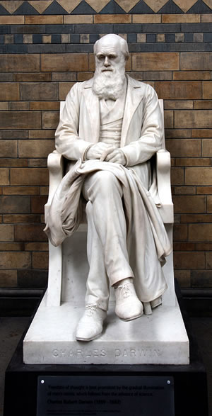 Charles Darwin statue in the UK Natural History Museum