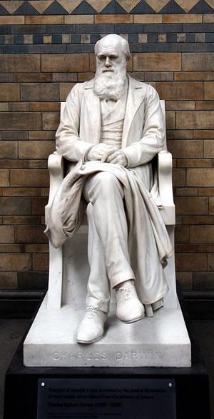 Charles Darwin statue in the UK Natural History Museum